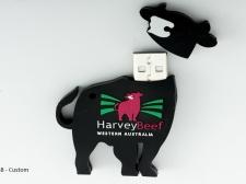 Custom_USB